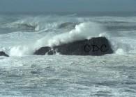 CDC sea