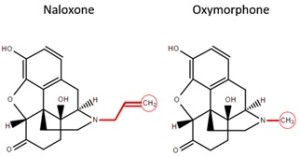 naloxone oxycodone compare