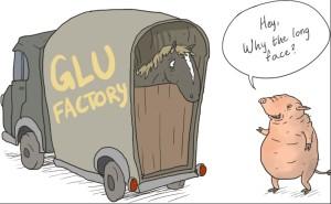 glue factory