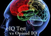 Brain IQ