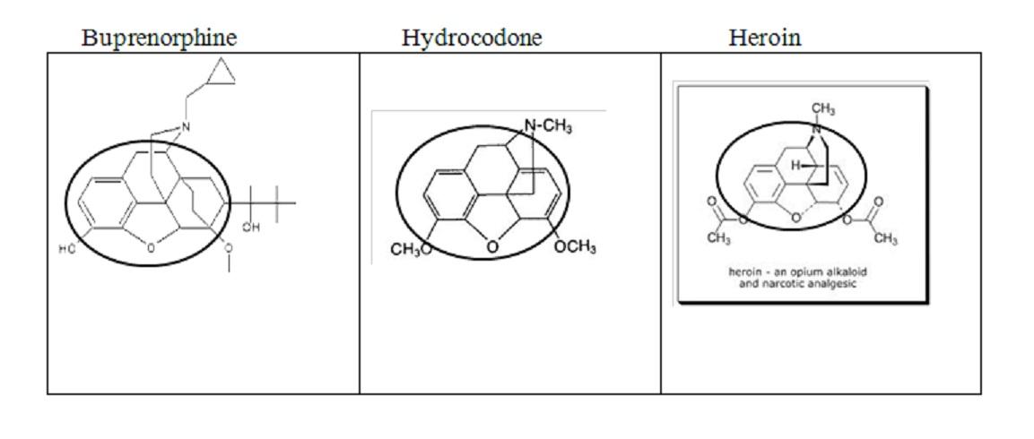 Heroin, Hydrocodone, Buprenorphine & PROP-aganda – Pain Dr