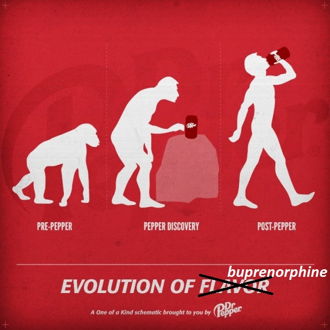 Buprenorphine, so misunderstood – Pain Dr